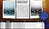 DAM EffZett Rolling DropShot Blei 21g