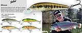 Salmo Minnow floating 5cm Farbe RR